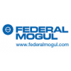Federal-Mogul Friction Products GmbH