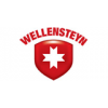 Wellensteyn International GmbH & Co. KG