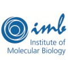 Institut of Molecular Biology (IMB)